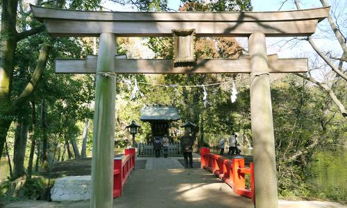 大宮氷川神社の長い参道で身も心も浄化されよう