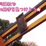 川越氷川神社で縁結び!赤い糸の相手が見つかるかも?