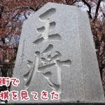 天童桜まつりで念願の「人間将棋」を見てきた件