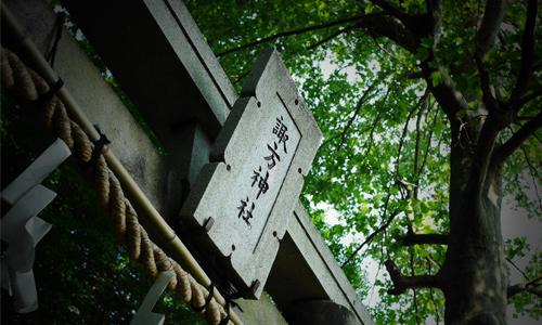 諏方神社は風情があるだけじゃない!実はゆる鉄撮影ができる電車スポット