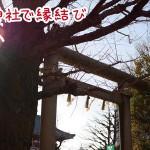浅草神社は隠れパワースポット!夫婦狛犬のご利益とは