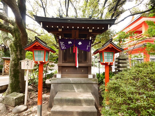 千葉神社は星の導きによるパワースポット!その絶大なご利益とは?