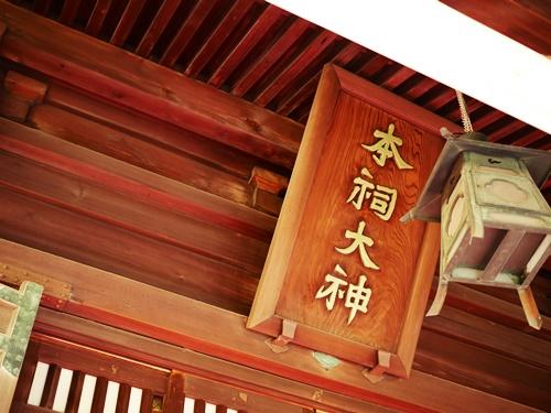 桜神宮は多くの神様がいるパワースポット!花帯で河津桜に願掛けしよう