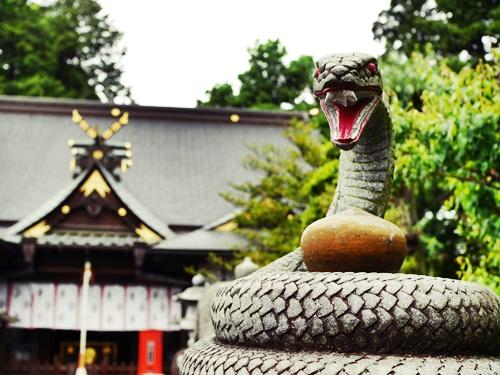 白蛇弁財天の銭洗いの瀧で金運のご利益アップ!珍しい蛇の狛犬も必見