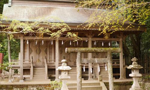大洗磯前神社の神々しさにビックリ!神磯の鳥居もご利益あり
