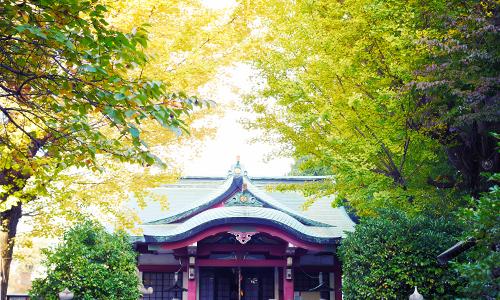 亀岡八幡宮は大切なペットと一緒に参拝できる神社
