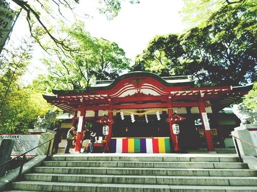 静岡県のパワースポット!縁結び・世界遺産・御神木までおすすめ神社5選