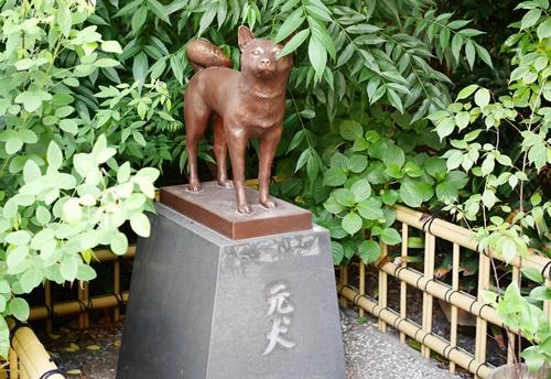 蔵前神社は神様が勢揃いのご利益さん!運が良ければ猫に会える神社