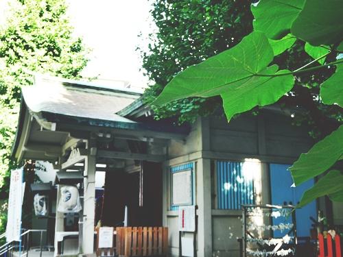 銀杏岡八幡神社は力強いご利益のパワースポット!御朱印にも銀杏がいる?